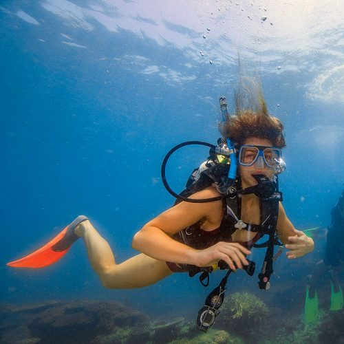 Frankland Islands scuba diving day trip from Cairns