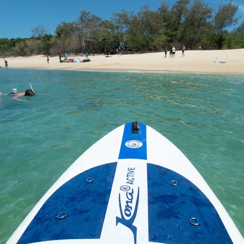 Frankland Islands Reef Cruises paddleboarding