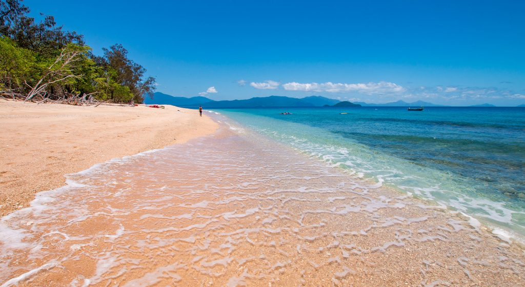 Frankland Islands Reef Cruises day tour Cairns
